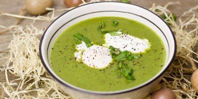 Холодный огуречный суп. Способ приготовления
